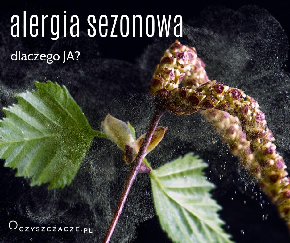alergia seozonowa
